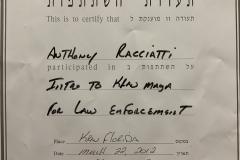 Krav Maga For Law Enforcement