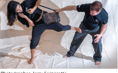 Principles of Krav Maga: Technical Risk Assessment